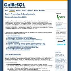 Cap 2. Protocolos de Enrutamiento