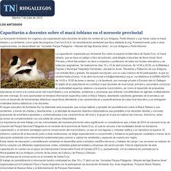 Capacitarán a docentes sobre el macá tobiano en el noroeste provincial - TnRioGallegos.com - Resistencia - Chaco