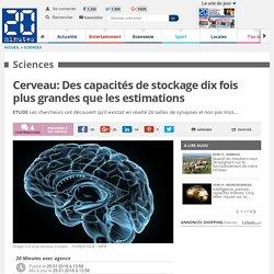 Cerveau: Des capacités de stockage dix fois plus grandes que les estimations