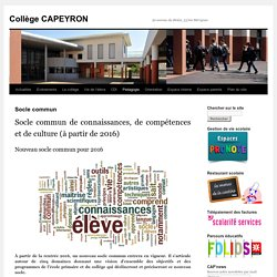 Socle commun - Collège CAPEYRONCollège CAPEYRON