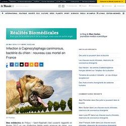 Infection à Capnocytophaga canimorsus, bactérie du chien : nouveau cas mortel en France – Réalités Biomédicales