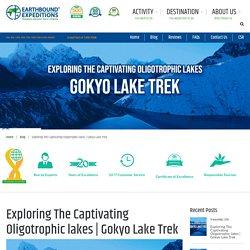 Exploring The Captivating Oligotrophic lakes