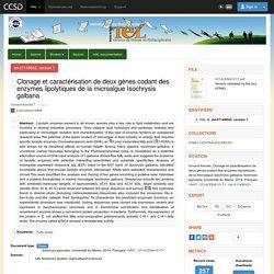 Clonage et caractérisation de deux gènes codant des enzymes lipolytiques de la microalgue Isochrysis galbana