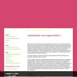 caractériser une organisation 1