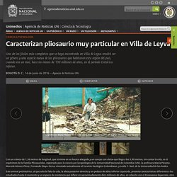 Caracterizan pliosaurio muy particular en Villa de Leyva -UNIMEDIOS: Universidad Nacional de Colombia