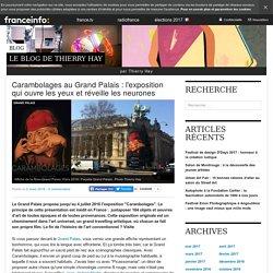 Carambolages Au Grand Palais : L'exposition Qui Ouvre Les Yeux Et Réveille Les Neurones