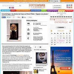Carambolages, les photos de l'expo au Grand Palais : Gagnez vos places !
