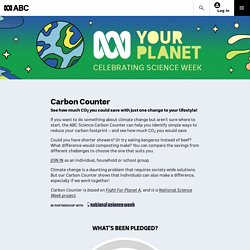 Carbon Counter: See how much CO2 you could save