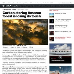 Carbon-storing Amazon forest is losing its touch