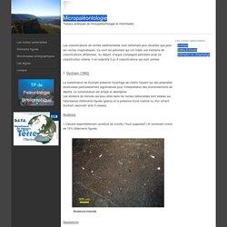 Les roches carbonatées - Micropaléontologie : les roches carbonatées