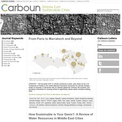 Carboun: Advocating Sustainability in the Middle East