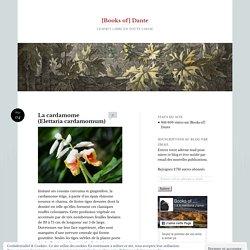 La cardamome (Elettaria cardamomum)
