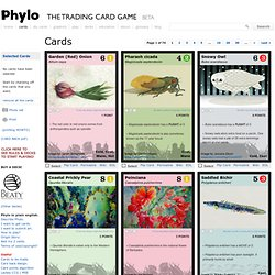 Cards – PHYLO: THE TRADING CARD GAME
