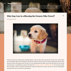 Why Dog Care is a Blessing for Owners Who Travel?