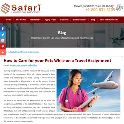 How to Care for your Pets While on a Travel Assignment