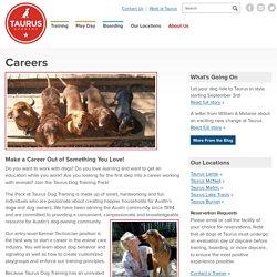Careers - Taurus Dog Training