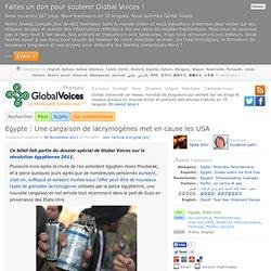 Egypte : Une cargaison de lacrymogènes met en cause les USA