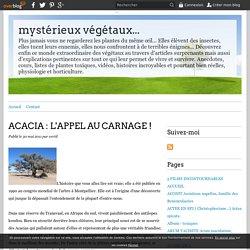 ACACIA : L'APPEL AU CARNAGE ! - mystérieux végétaux...