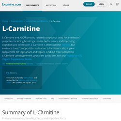L-Carnitine: Scientific review on benefits weight loss/fat burning, side effects, and more