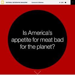 Carnivore's Dilemma