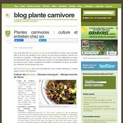 Plantes carnivores : culture et entretien chez soi