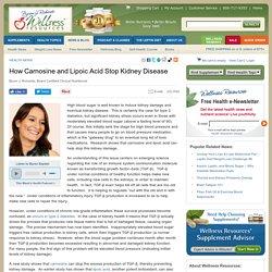 How Carnosine and Lipoic Acid Stop Kidney Disease
