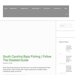 South Carolina Bass Fishing