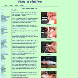 Carp Pox information from the Fish Helpline