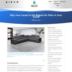 Why Your Carpet Is the Biggest Air Filter In Your Home - Soap Free Procyon