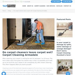 carpet cleaning armadale