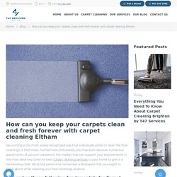 house cleaning eltham