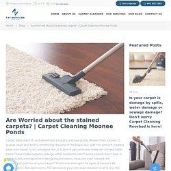 carpet cleaning moonee ponds