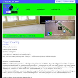 Denver's Very Best Carpet Cleaning, Tile & Grout, and Flood & Restoration
