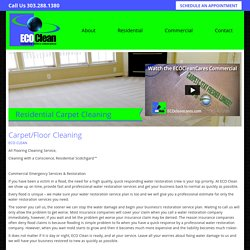Carpet And Floor Cleaning Denver