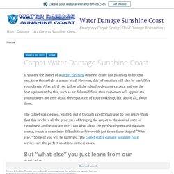 Carpet Water Damage Sunshine Coast – Water Damage Sunshine Coast