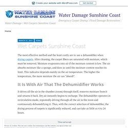 Wet Carpets Sunshine Coast – Water Damage Sunshine Coast