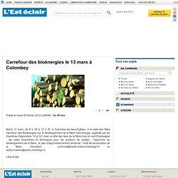 Carrefour des bioénergies le 13 mars à Colombey