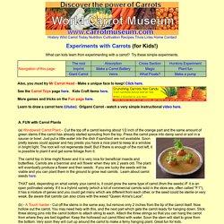 Carrot Experiments