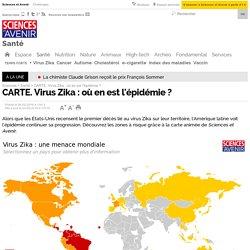 CARTE. Virus Zika : où en est l'épidémie ? - 3 mai 2016
