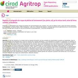 CIRAD - 2009 - Rapport de stage : Diagnostic et cartographie des risques de pollution de l'environnement (eau, plantes, sol), par les métaux lourds, autour de fermes camelines, au Kazakhstan