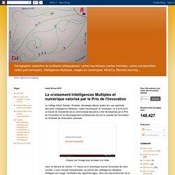 Cartographie subjective de pratiques pédagogiques : Le croisement Intelligences Multiples et numérique valorisé par le Prix de l'innovation