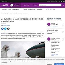 Zika, Ebola, SRAS : cartographie d'épidémies mondialisées