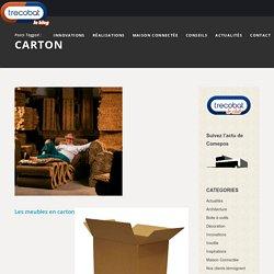 carton Archives - Ma Maison Idéale