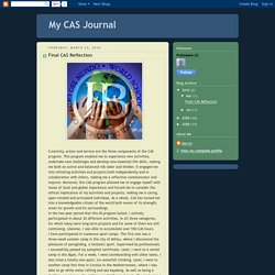 My CAS Journal: Final CAS Reflection