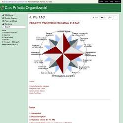 Cas Pràctic Organització - 4. Pla TAC