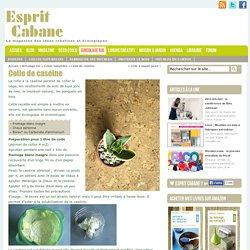 Colle de caséine, Esprit Cabane, idees creatives et ecologiques