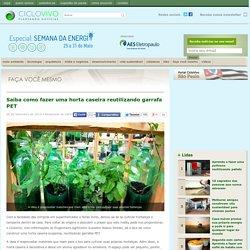 Saiba como fazer uma horta caseira reutilizando garrafa PET