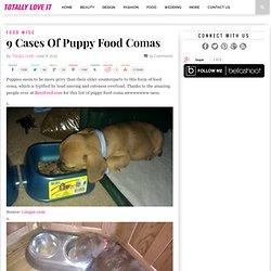 9 Cases Of Puppy Food Comas