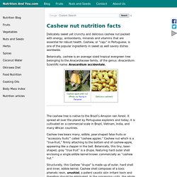 Cashew nut nutrition facts and health benefits