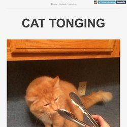 CAT TONGING